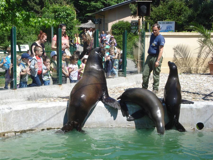 Posjeta Zoo vrtu u Zagrebu