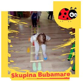 Skupina Bubamare