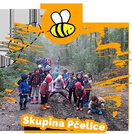 Skupina Pčelice